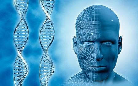 Face DNA Test